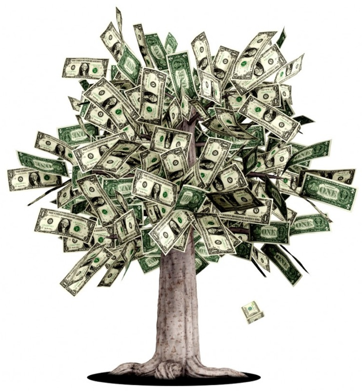 dollar-money-tree.jpg